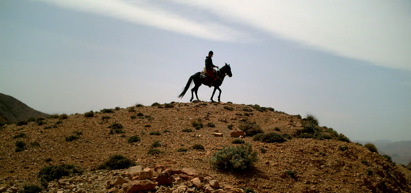 High Atlas horseback riding