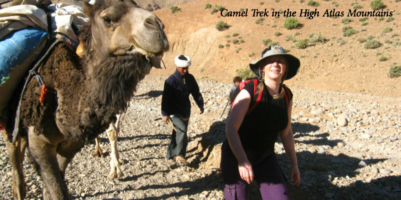 high atlas camel trek